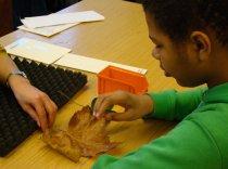 Im Bioniklabor des METEUM (Technische Kinder- und Jugendakademie)erforschten die Teilnehmer unterschiedliche Oberflächenstrukturen und ihre Eigenschaften.